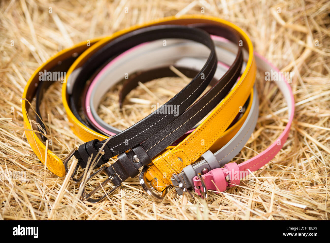 Female belts closeup - Stock Image
