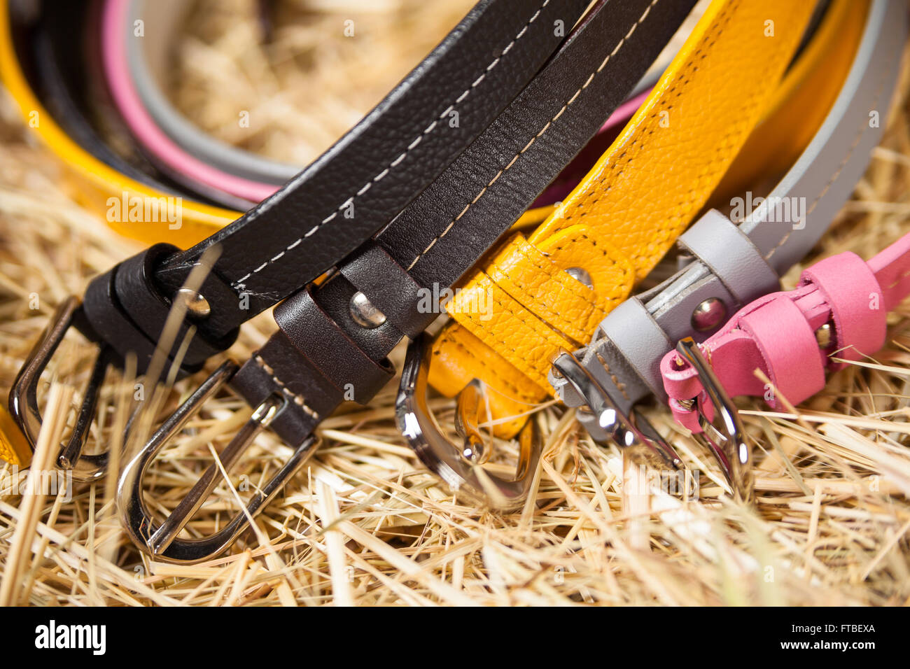 Female colored belts closeup - Stock Image