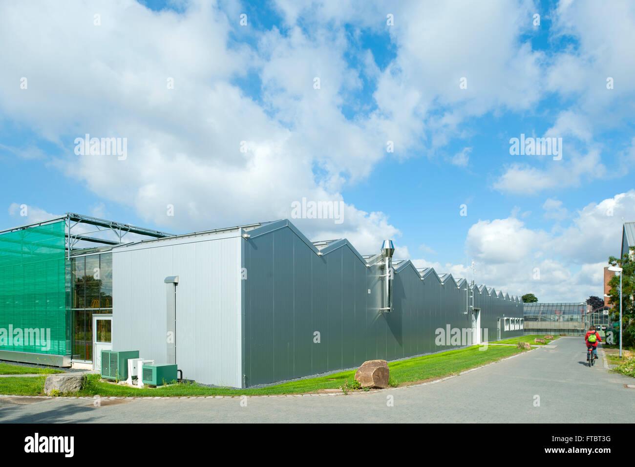 Deutschland, Köln, Max-Planck-Institut für Pflanzenzüchtungsforschung, Gewächshäuser - Stock Image