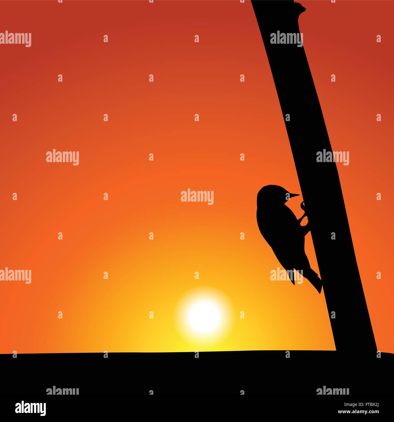 Woodpecker Silhouette At Sunset - Stock Vector