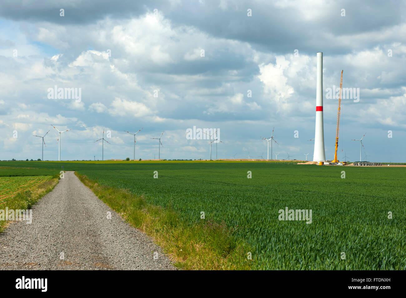 BRD, Deutschland, NRW, Rhein-Erft-Kreis, Windpark Königshovener Höhe nördlich von Bedburg am Braunkohletagebau - Stock Image