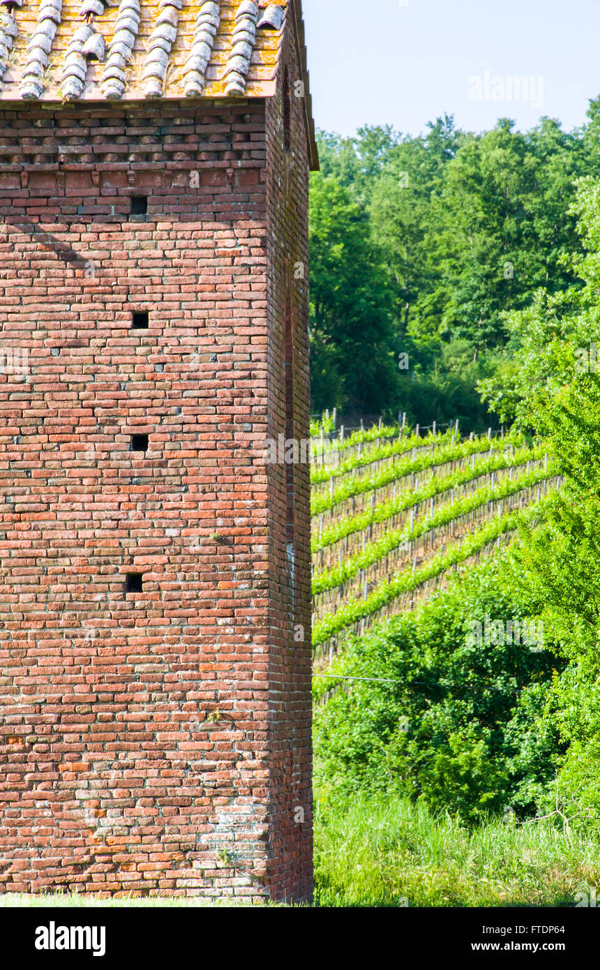 red bricks rural building with wineyards on the background - Stock Image