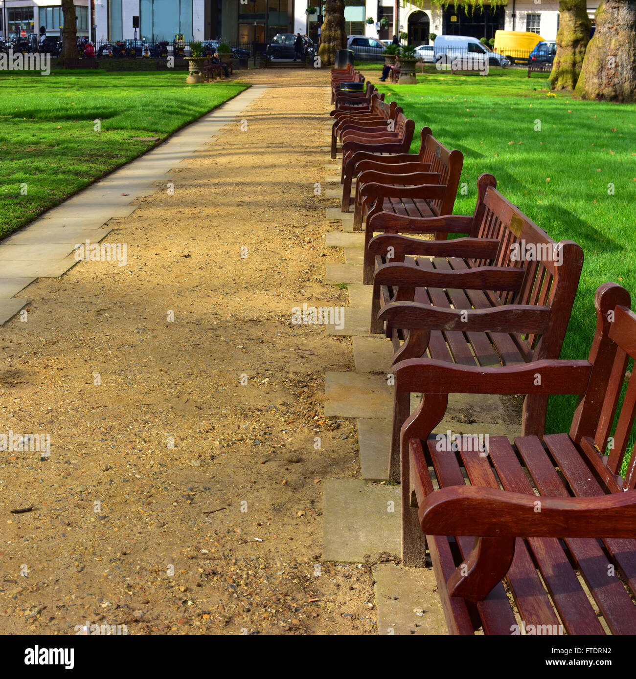 Benches along the main path in Berkeley Square, Mayfair, London. - Stock Image