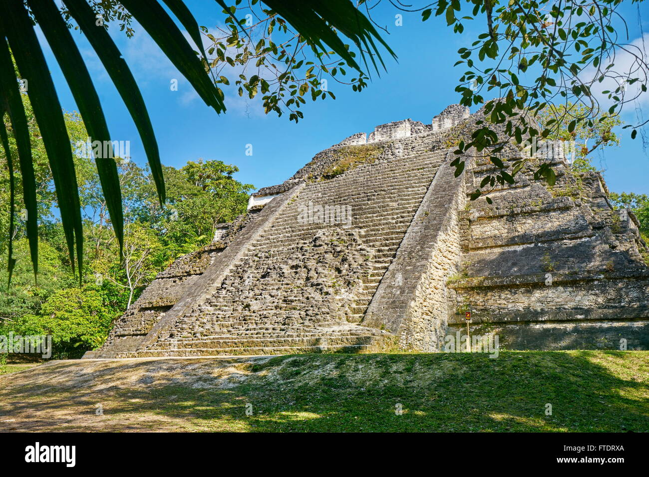 Ancient Maya Ruins, Tikal National Park, Yucatan, Guatemala Stock Photo