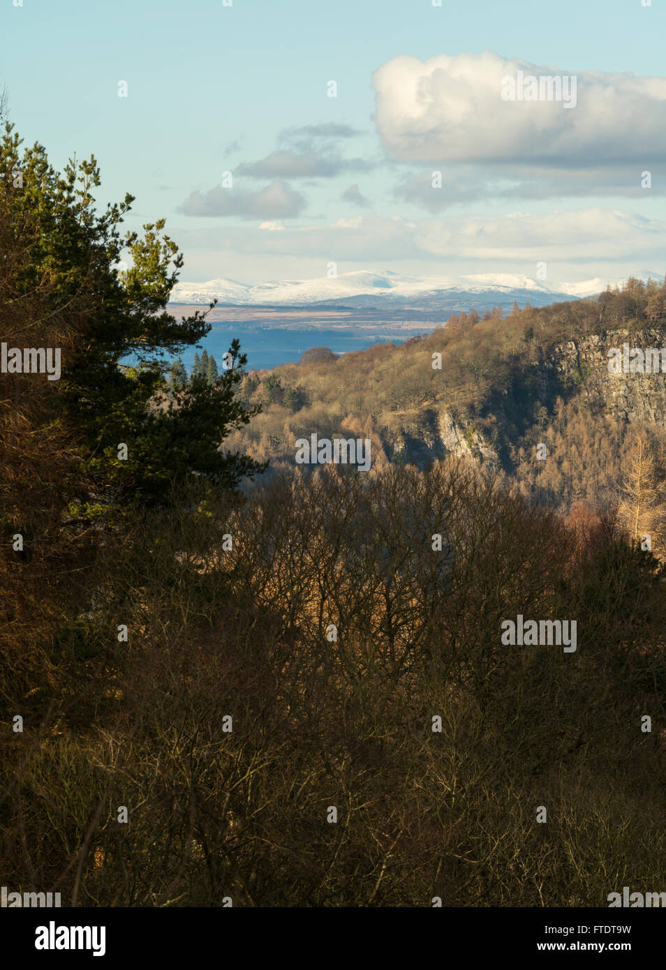 View north towards Kinnoull Hill and Grampian Mountains from Moncrieffe Hill, Perthshire, Scotland - Stock Image