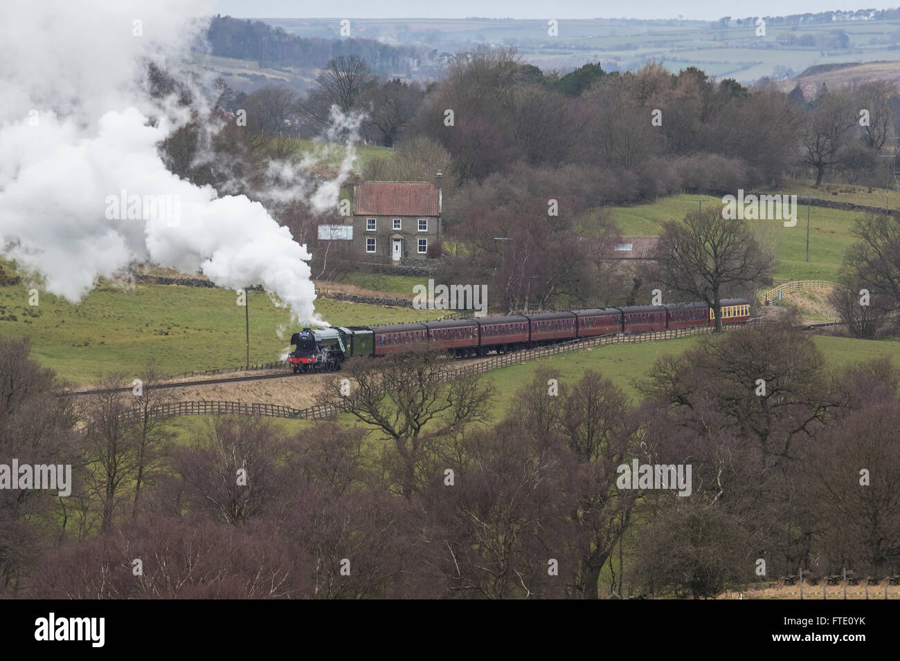 Flying Scotsman steam locomotive hauling an excursion train through the valley of the North York Moors Railway March - Stock Image
