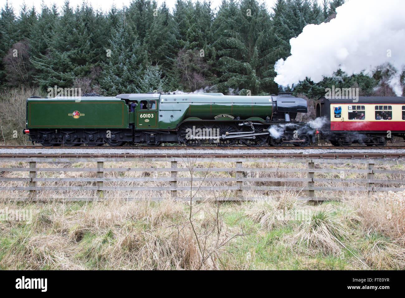Flying Scotsman steam locomotive following its complete refurbishment in 2016 near Levisham station - Stock Image