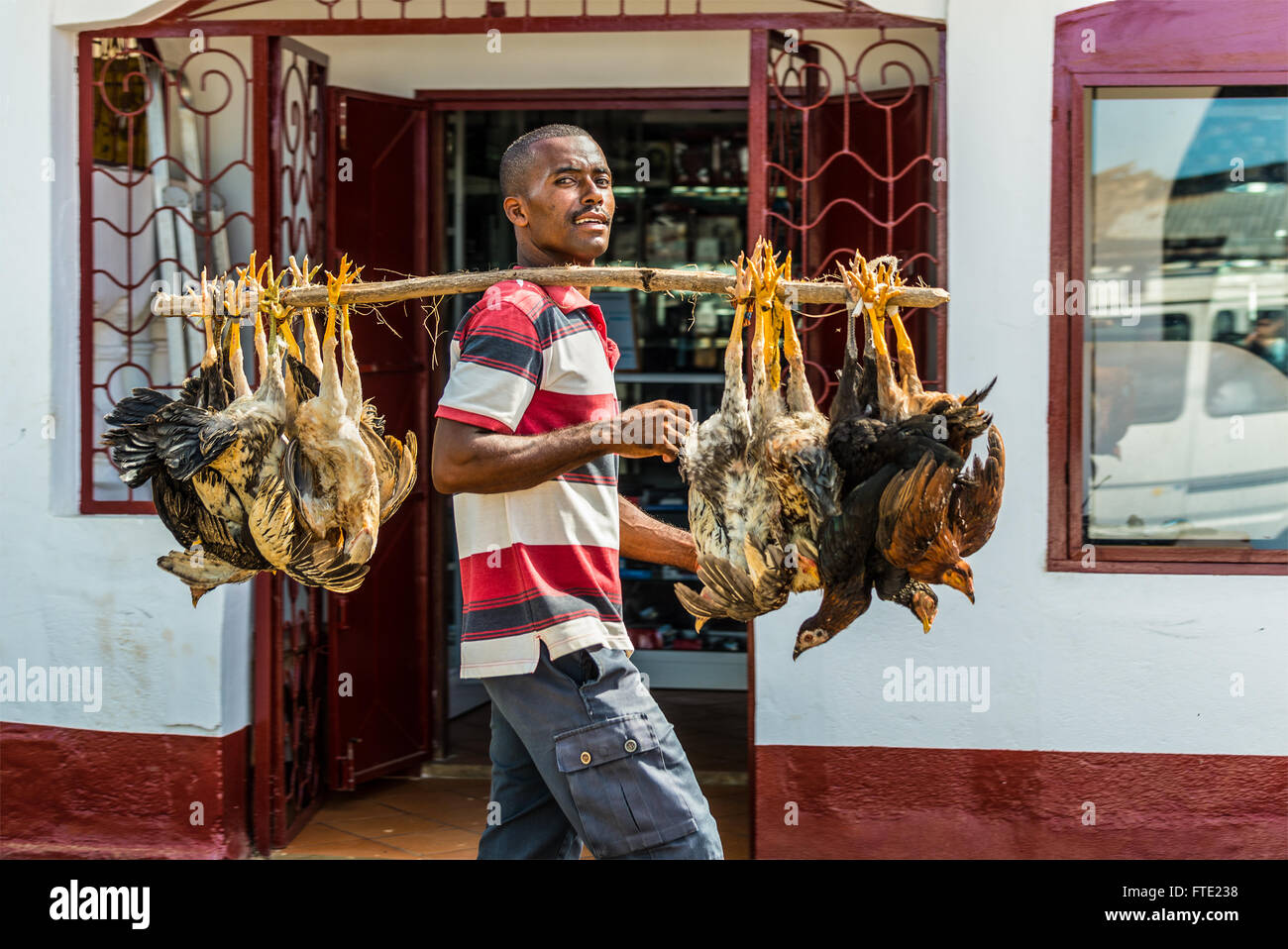 Malagasy trader carries chickens to the market in Hell Ville, a town at the Nosy Be - Stock Image