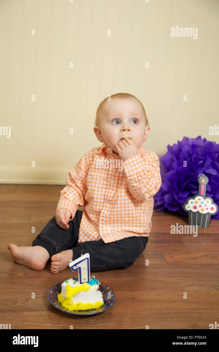 Marvelous Baby Boys First Birthday Cake Smash Stock Photo 101115703 Alamy Funny Birthday Cards Online Alyptdamsfinfo