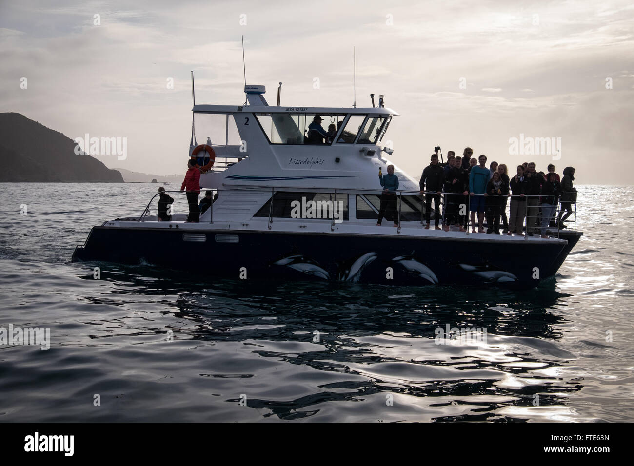 Dolphin Encounter vessel, 'Lissodelphis' off the New Zealand coast near Kaikoura - Stock Image