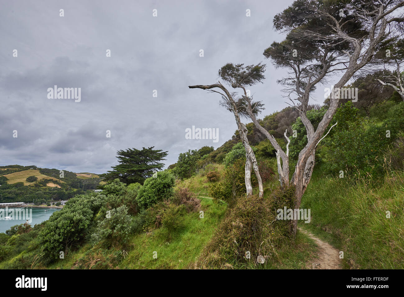 Scenery and landscapes across land and water in Waiheke Island New Zealand - Stock Image