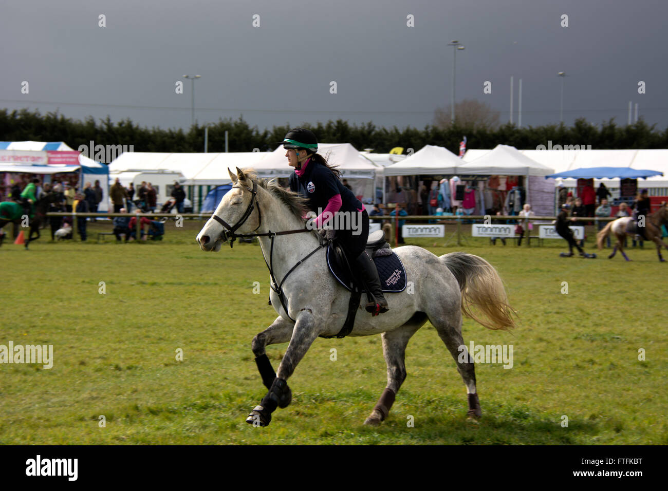Thame, Oxon, UK. 27th March, 2016. Summer outdoor agricultural show held in Thame, United Kingdom. Credit:  David - Stock Image