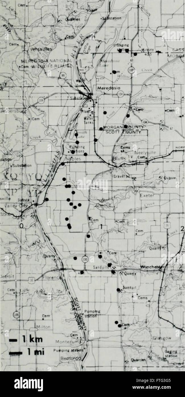Distribution, habitat, and calling season of the Illinois chorus frog (Pseudacris streckeri illinoensis) along the lower Illinois River (1988) Stock Photo