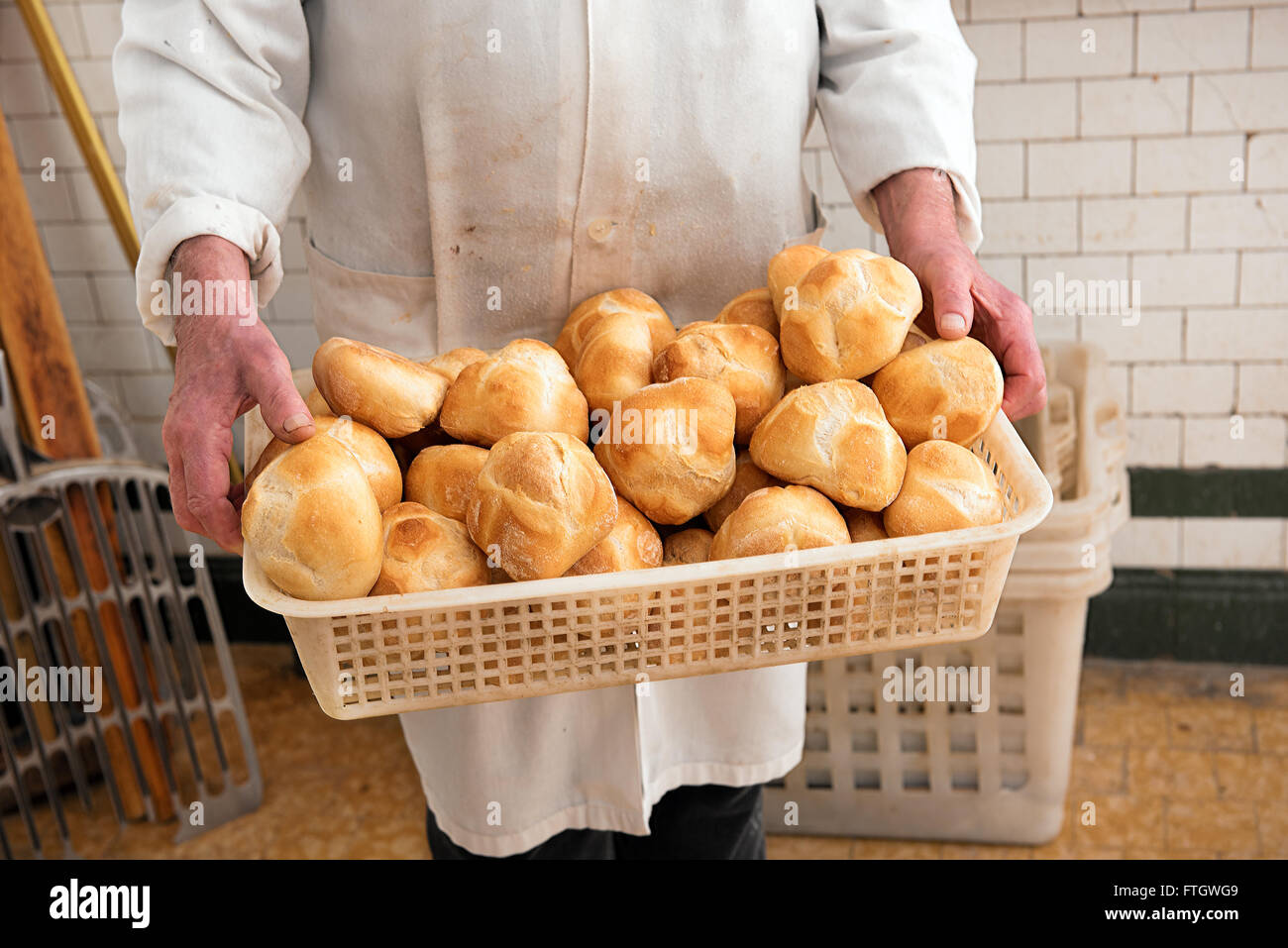 Baker holding a basket full of freshly baked crusty white bread rolls in his white coat at the bakery - Stock Image