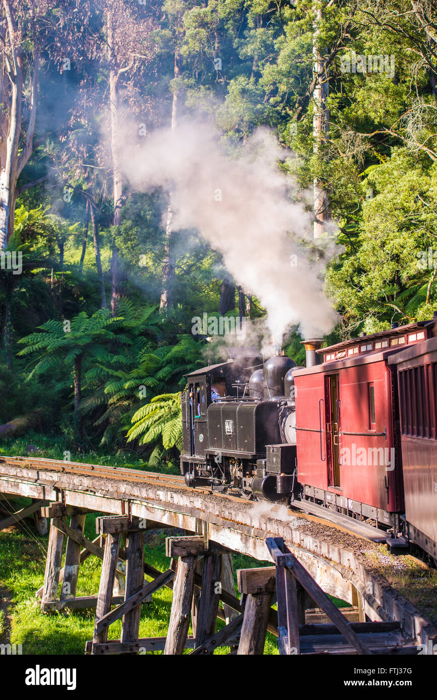 Puffing Billy steam train - Stock Image