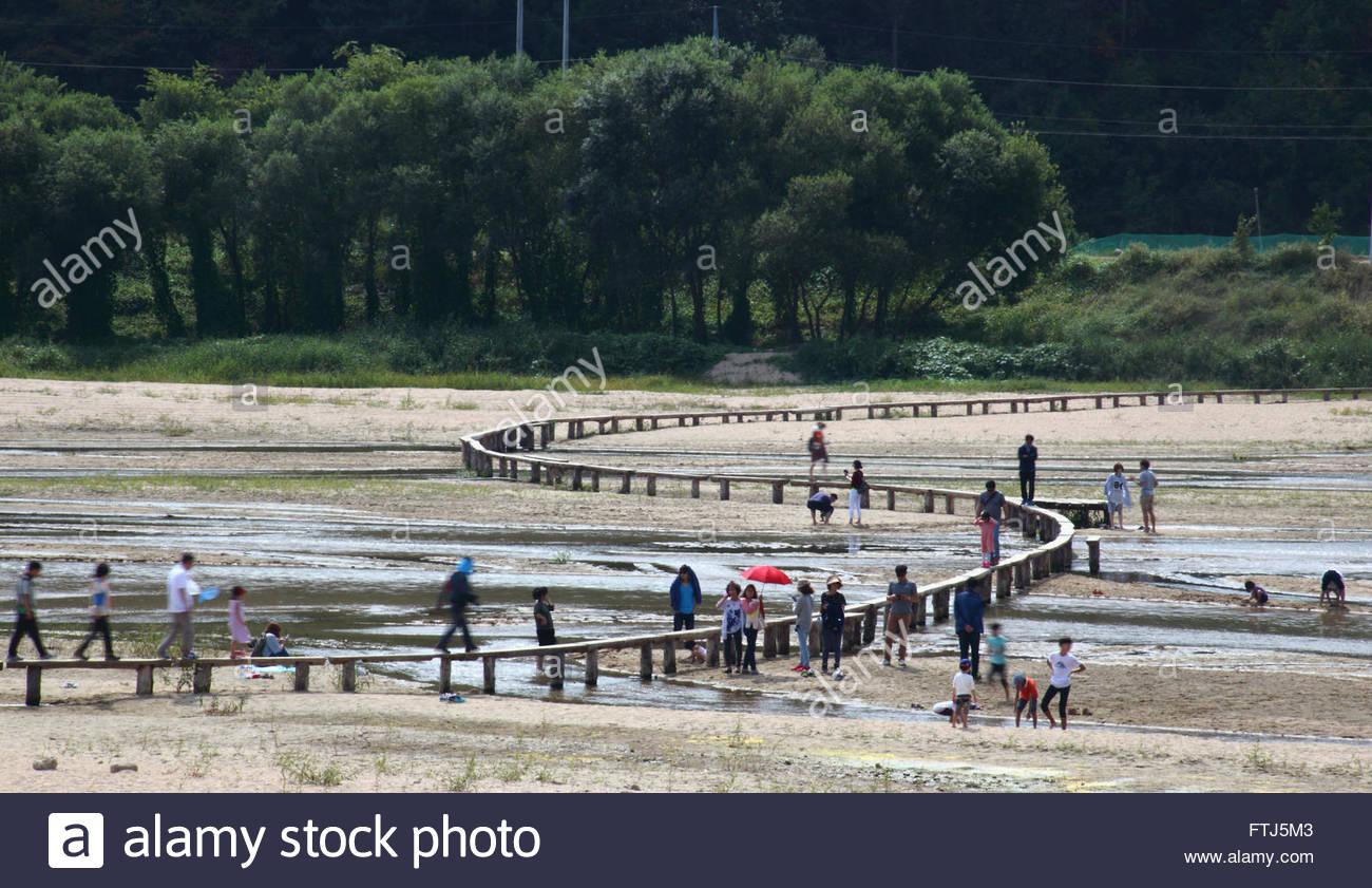 single log bridge on the river - Stock Image