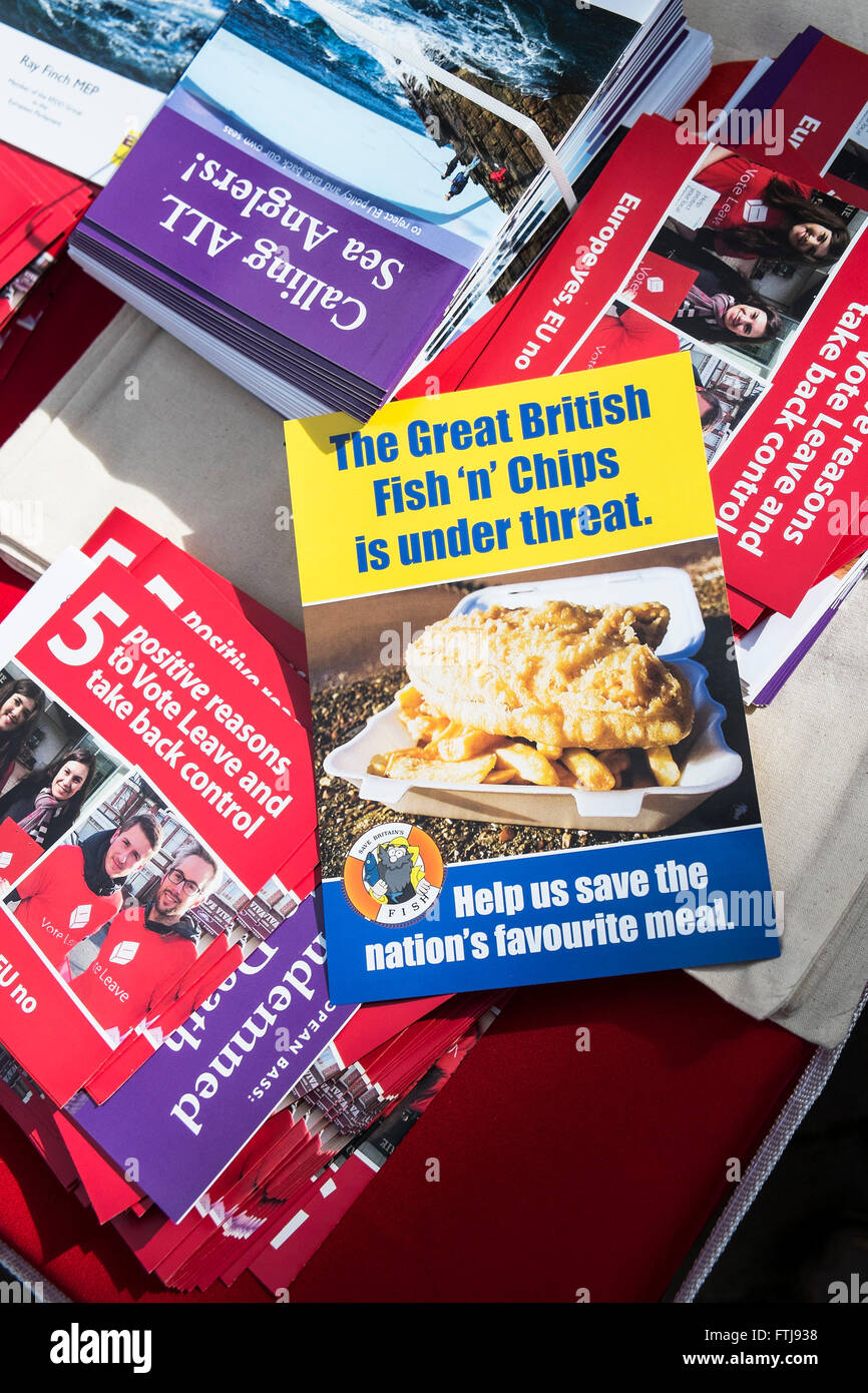 Bret - A variety of leaflets supporting the UK exit from the European Union. - Stock Image