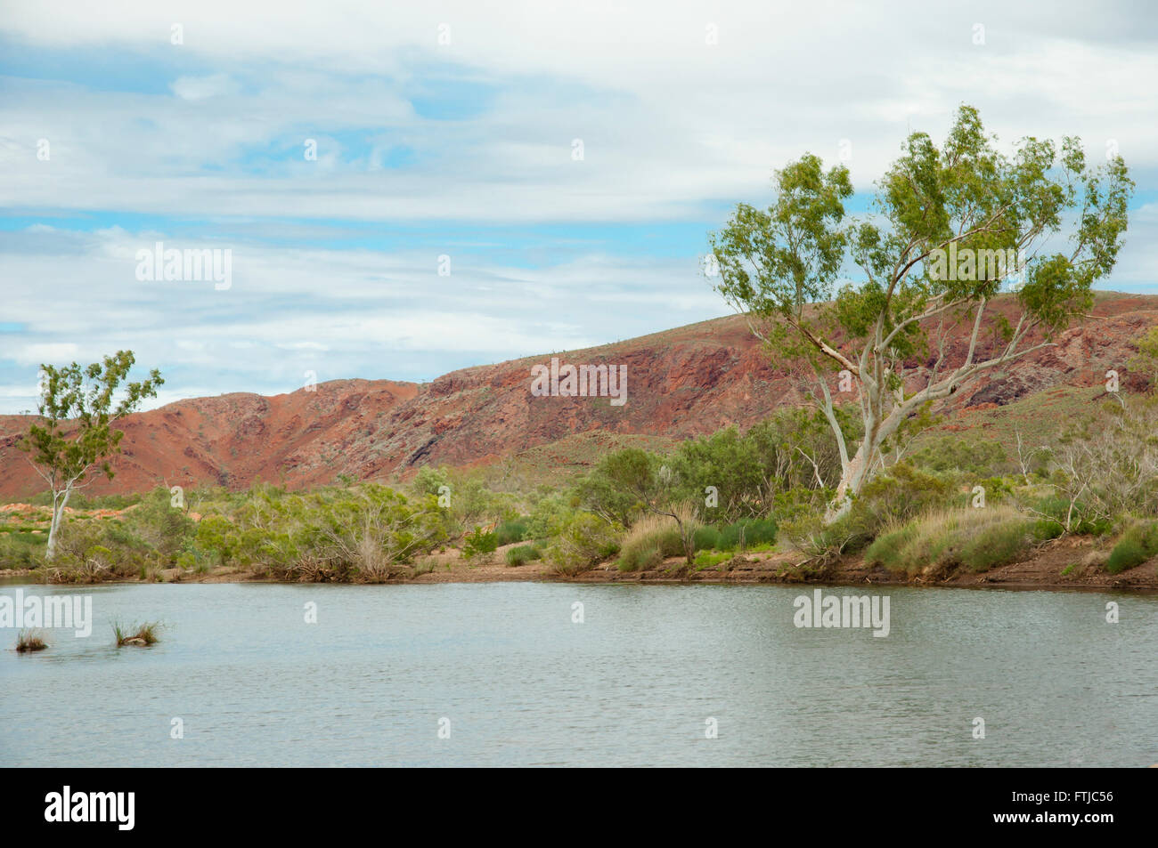 Billabong - Australia - Stock Image