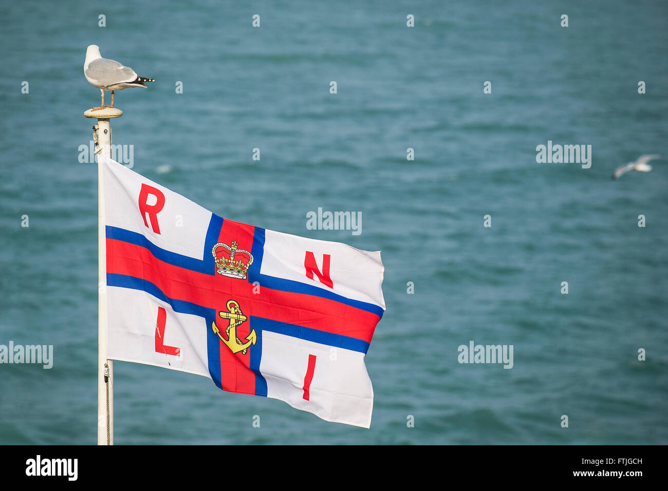 The flag of the RNLI. - Stock Image