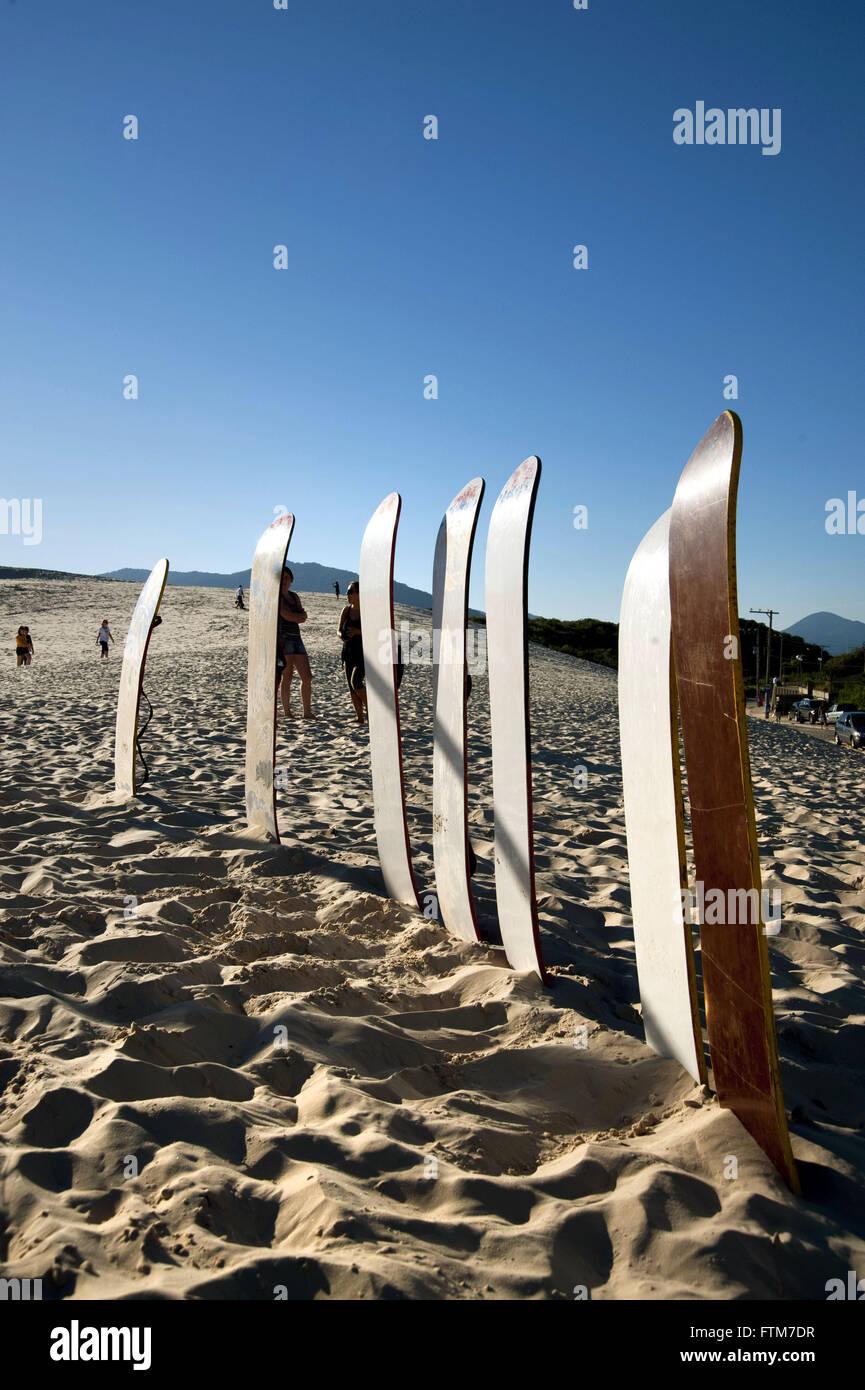 Planks of sandboarding on sand dunes of Joaquina Beach - Stock Image