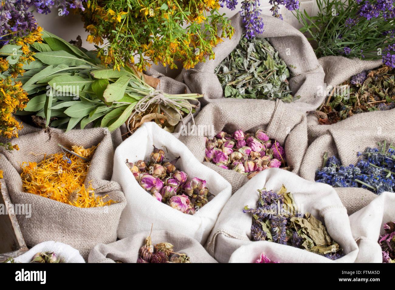 Healing medical herbs in a linen sacks - Stock Image