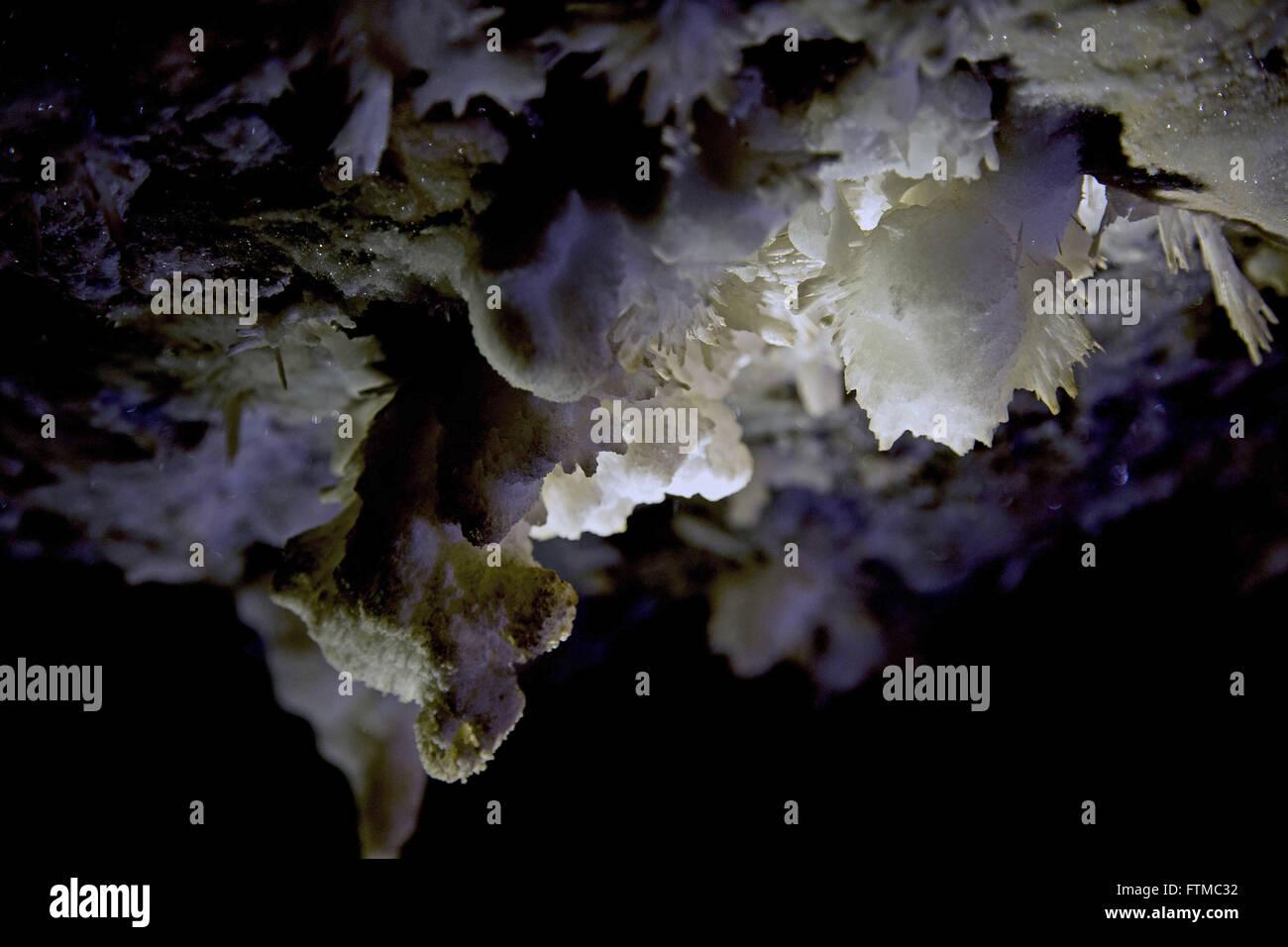 Speleothems in the cave of Torrinha the Chapada Diamantina - Stock Image