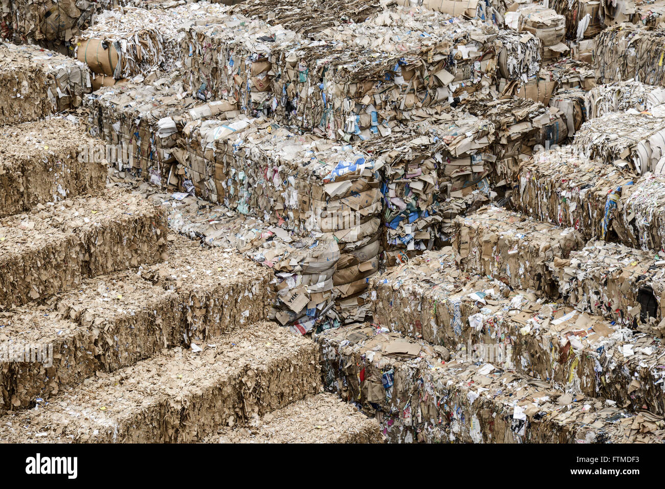 Detail of bales of recyclable cardboard that will be turned into paper for packaging - Stock Image
