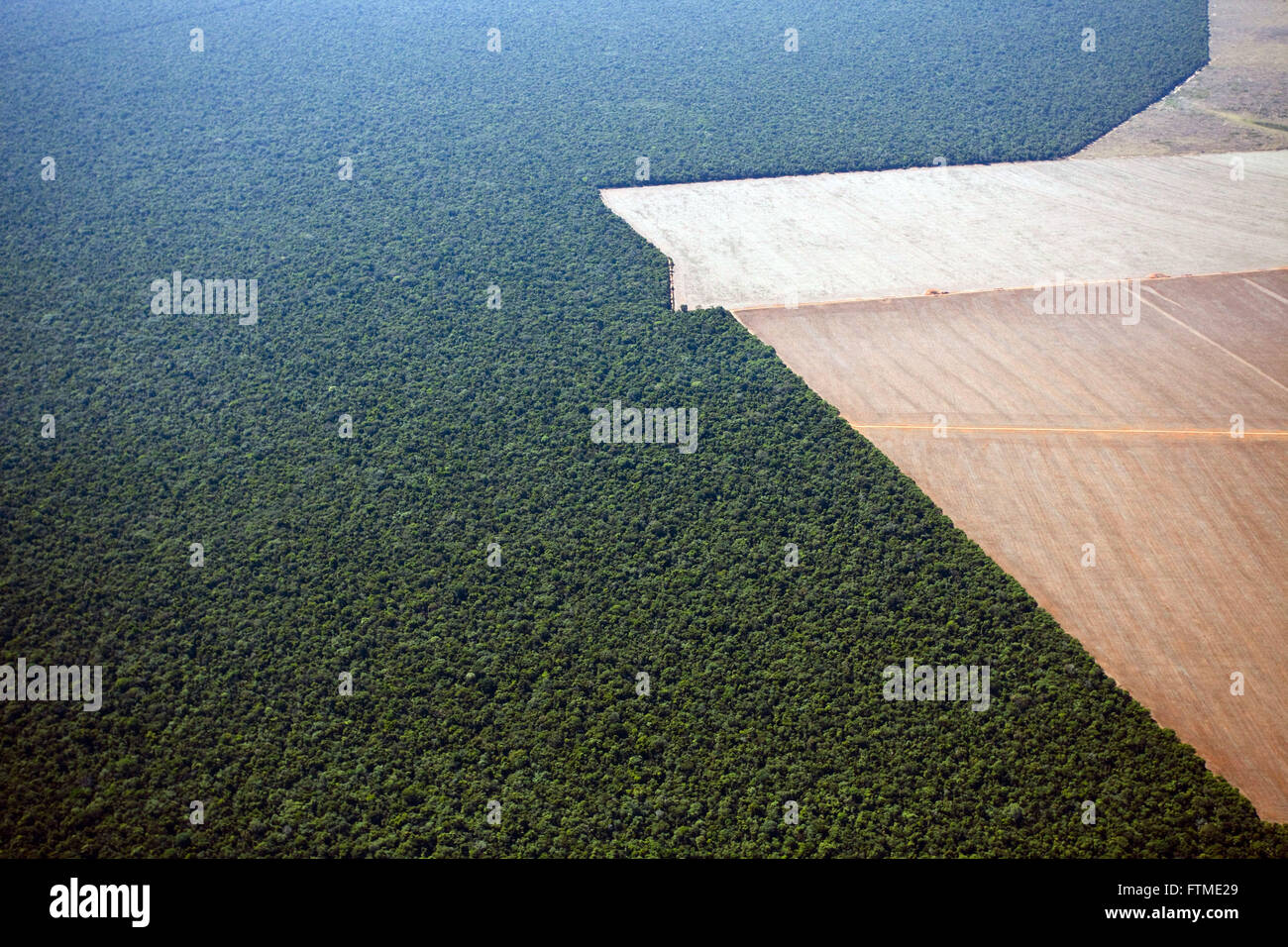 Aerial view of the area preserved and limit area deforested for farming in the middle of Savana - Stock Image
