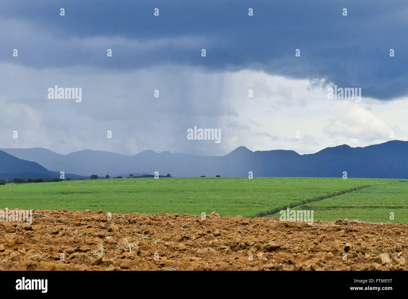 Precipitation of rain in the countryside with plantation of cane sugar and Serra da Canastra Incidental - Stock Image