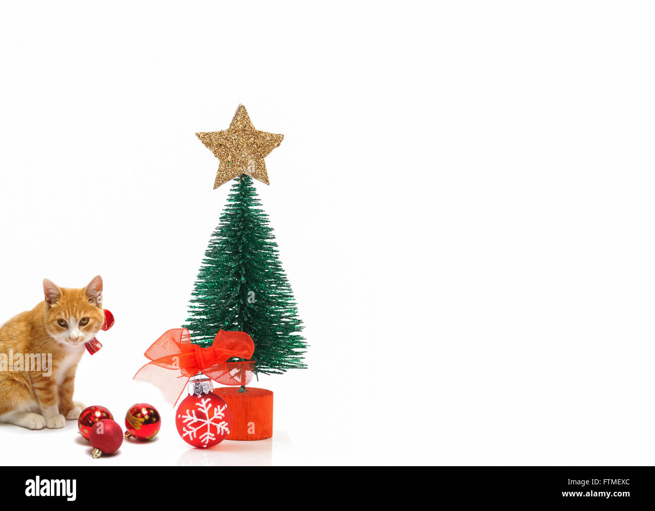 ginger cat with christmas decorations stock image