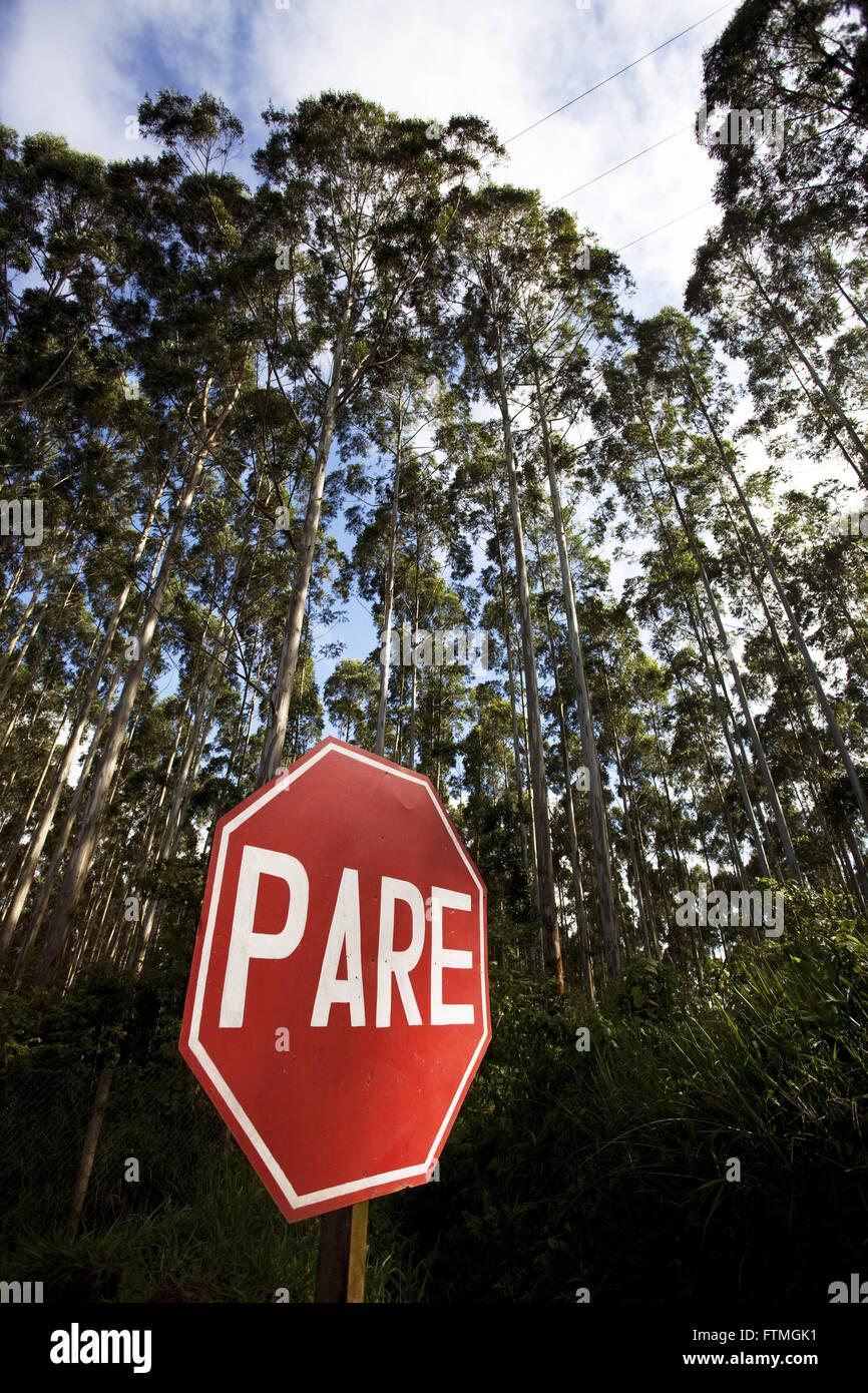 Road signs amid eucalyptus plantation in rural Telemachus Borba - Stock Image