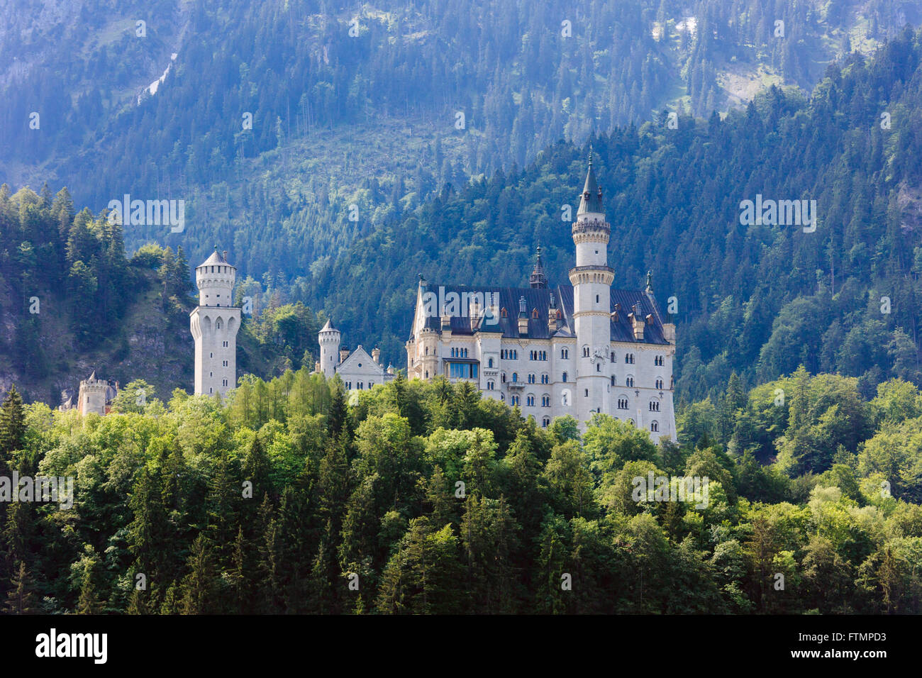 View to Schloss Neuschwanstein castle in forested Bavarian Alps. Schwangau, Allgaeu, Fussen, Bavaria, Germany, Europe. - Stock Image