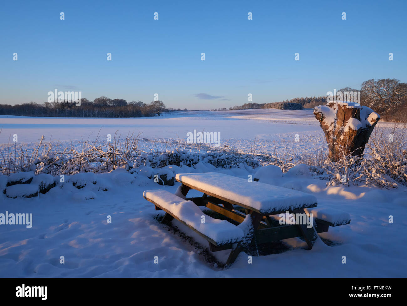 Outdoor table and bench set in the snow on a sunny early winter morning Stock Photo