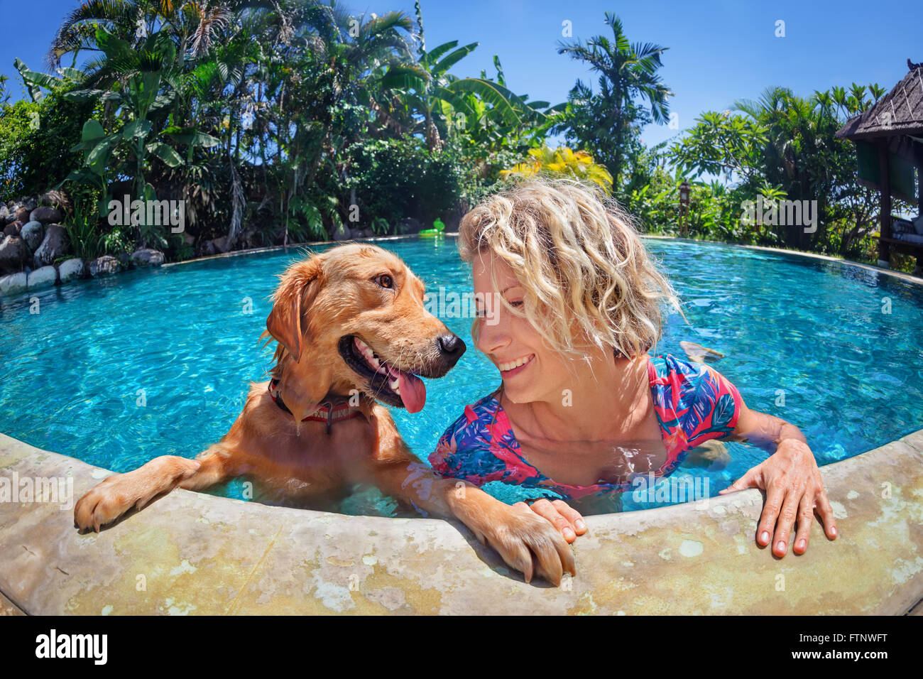 Funny portrait of smiley woman playing with fun and training golden retriever puppy in outdoor swimming pool. - Stock Image