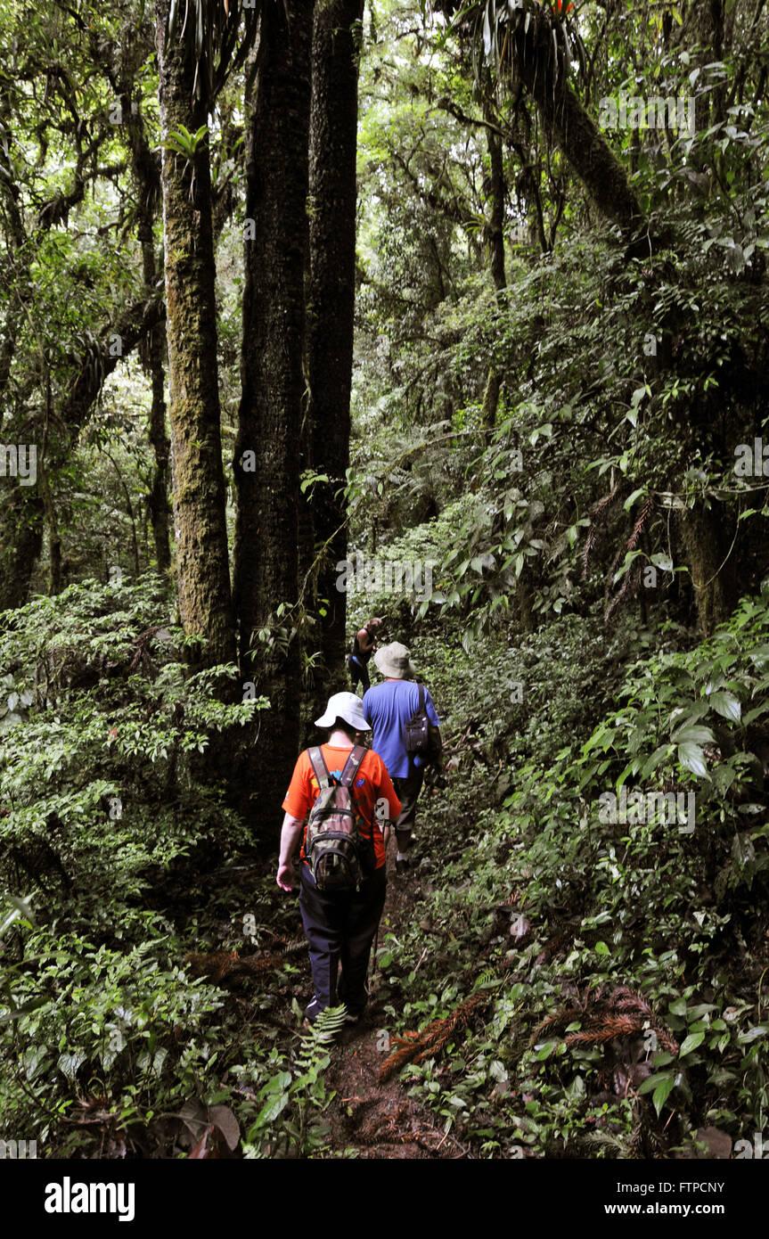 Ecotourists walking trail on the bushland of Bocaino Mountains National Park - Stock Image