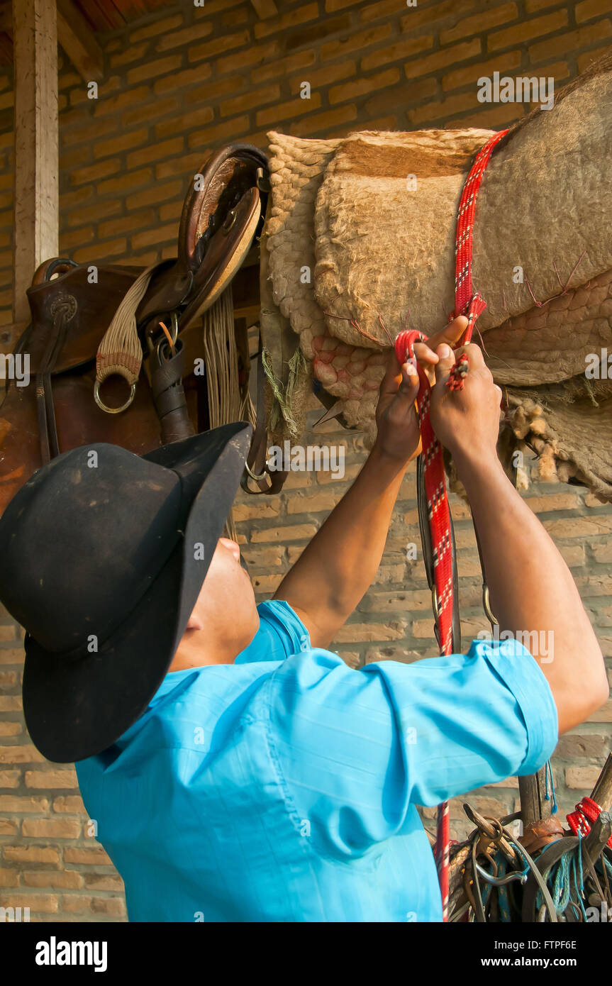 Pawn packing harness horse farm in the Pantanal - Stock Image