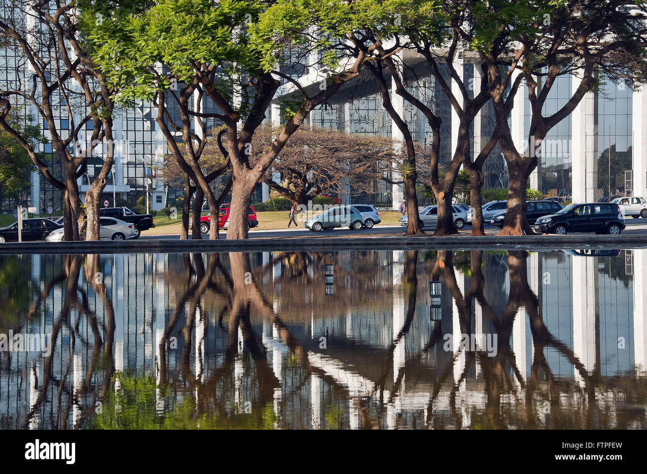 Reflection of trees in the artificial lake of the Praca do Buriti and vehicle traffic - Stock Image