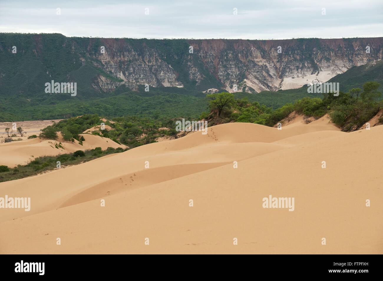Dunes Jalapao the city of Bushmen - Desert Jalapao - Stock Image