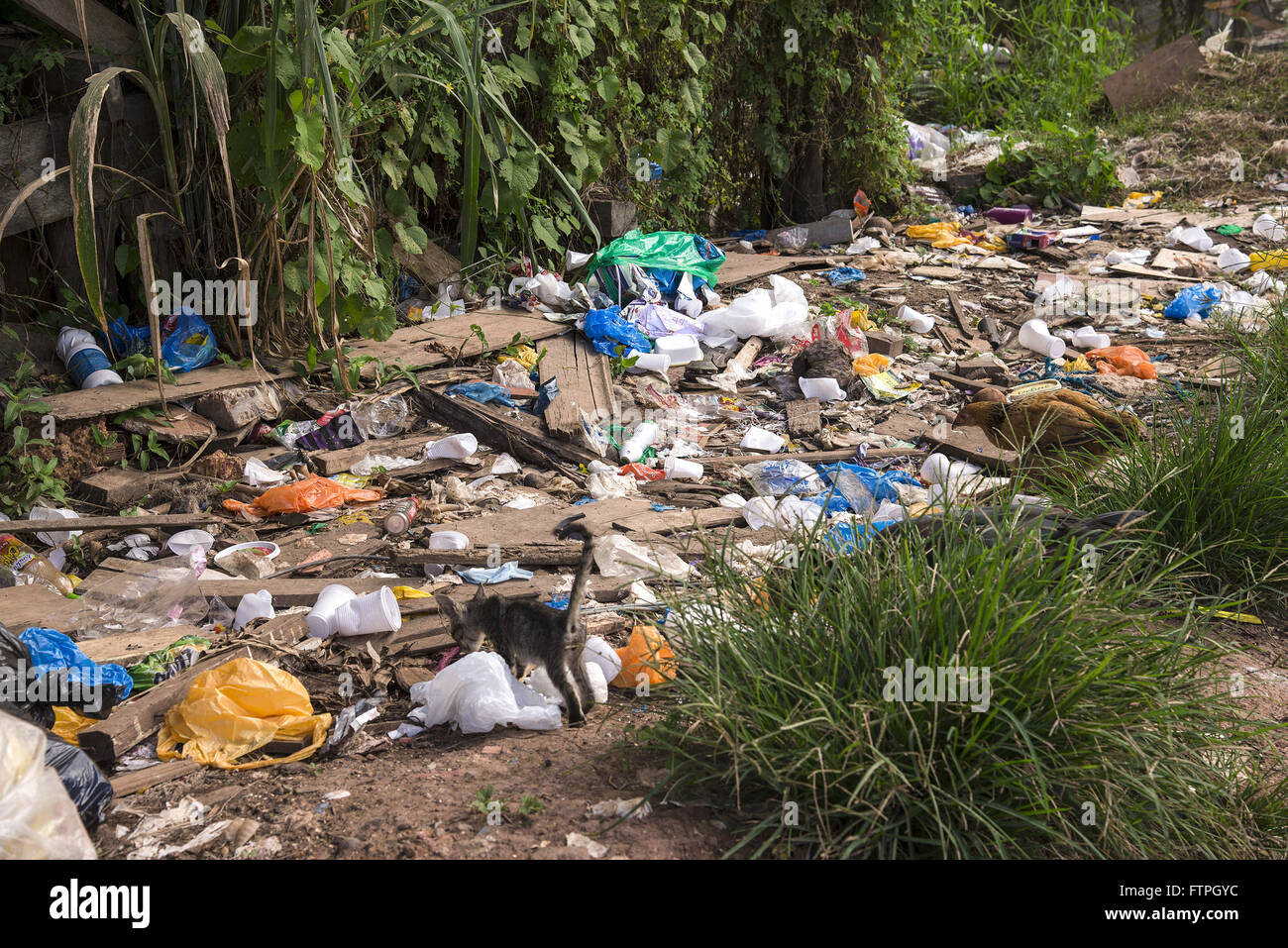 Discarded trash in nature by residents of Vila Gutierrez - Stock Image