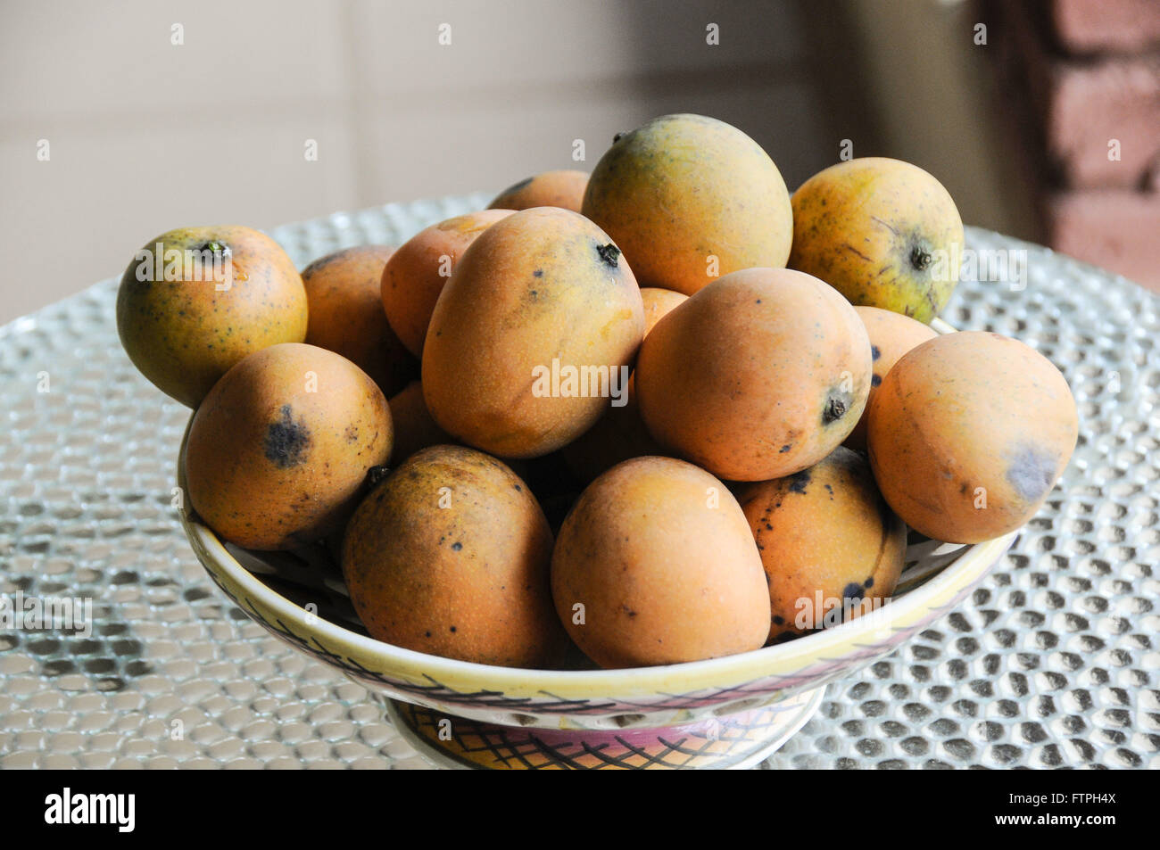 Ladies coconuts fruit tree in the countryside - Stock Image
