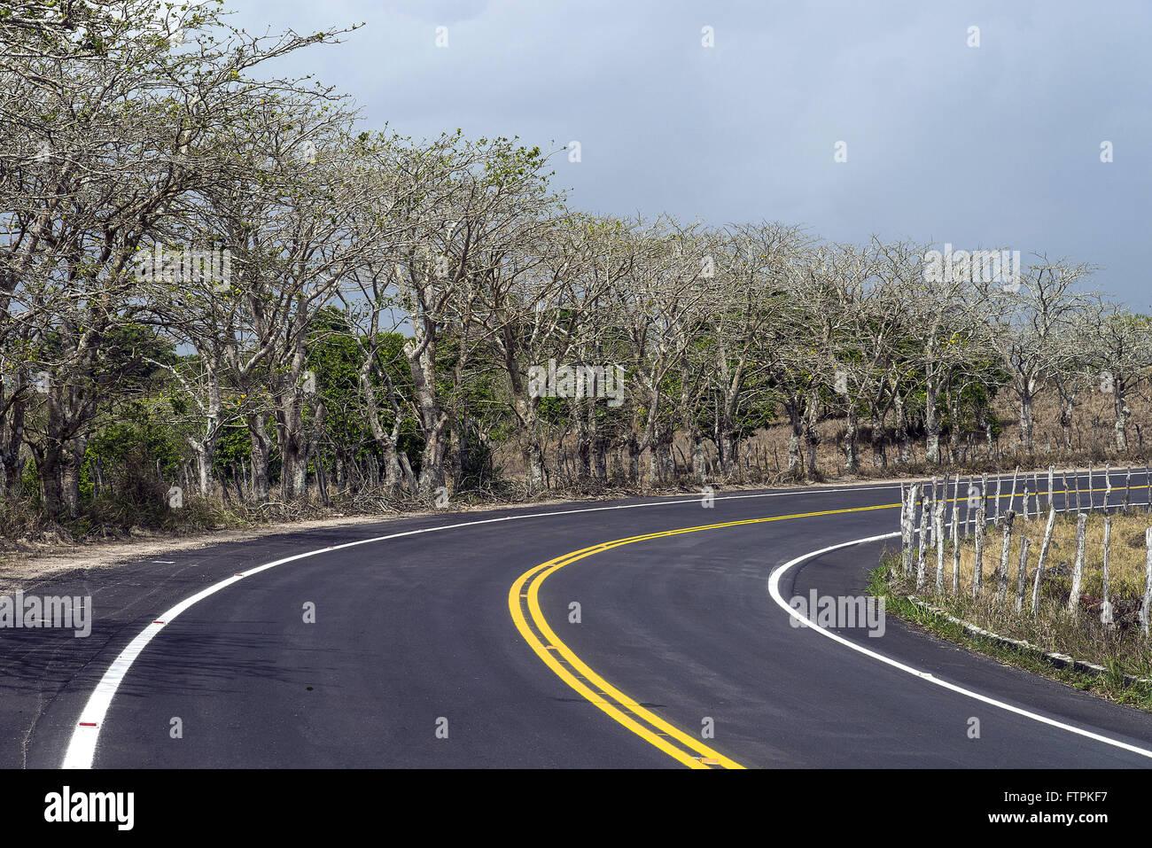Rodovia AL-210 recem restaurada - conhecida neste trecho por rodovia Graciliano Ramos - Stock Image