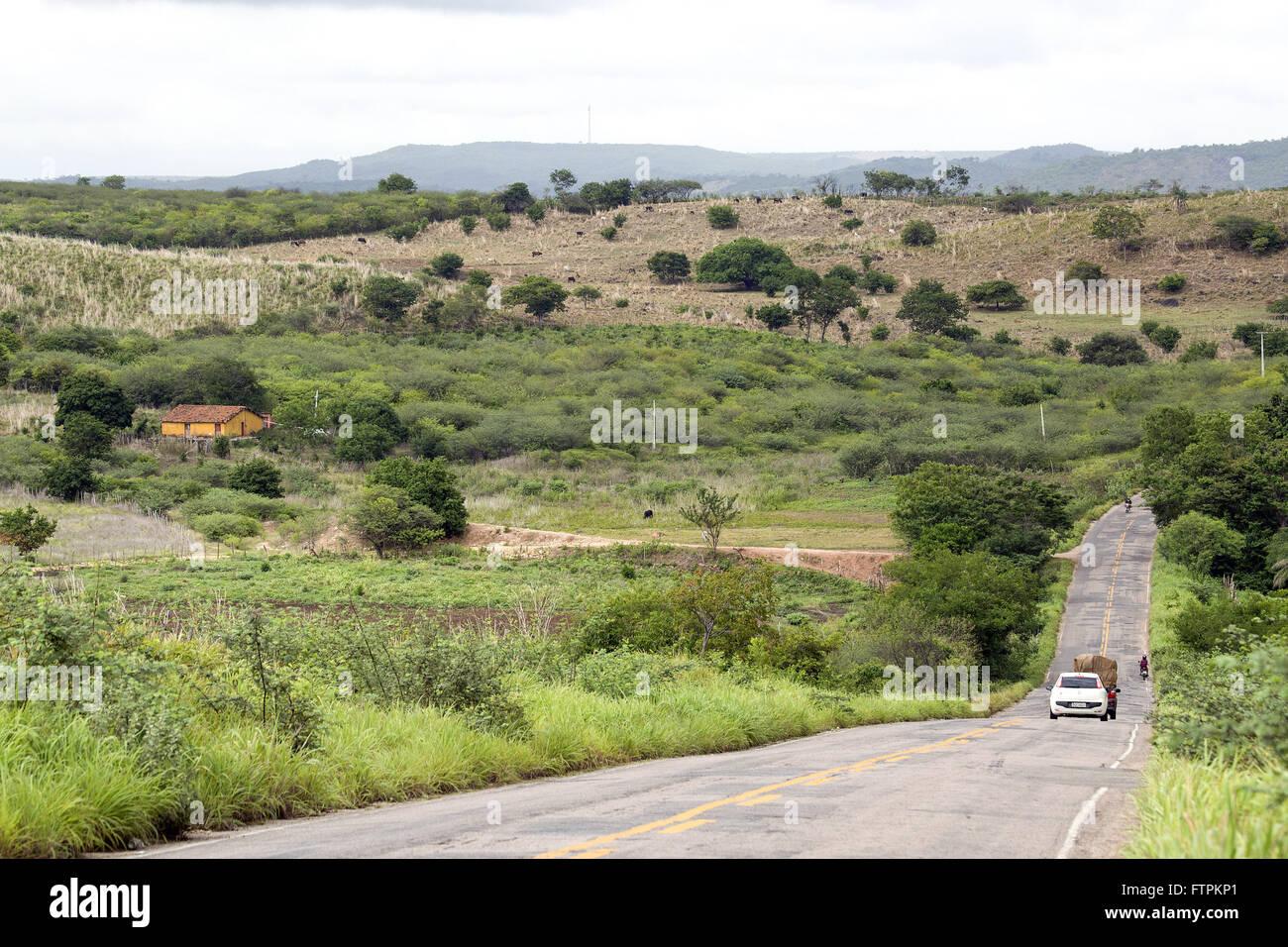 Cerrado vegetation in the EC-292 - Stock Image