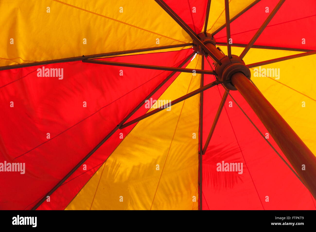 Giant red and yellow umbrella against a palm leaf in the botany garden - Stock Image