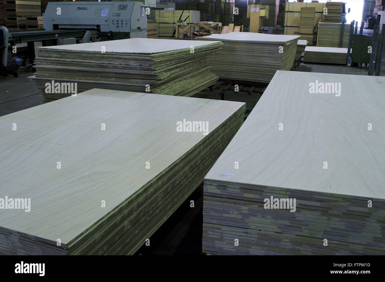 Laminated plywood - certified wood - Stock Image