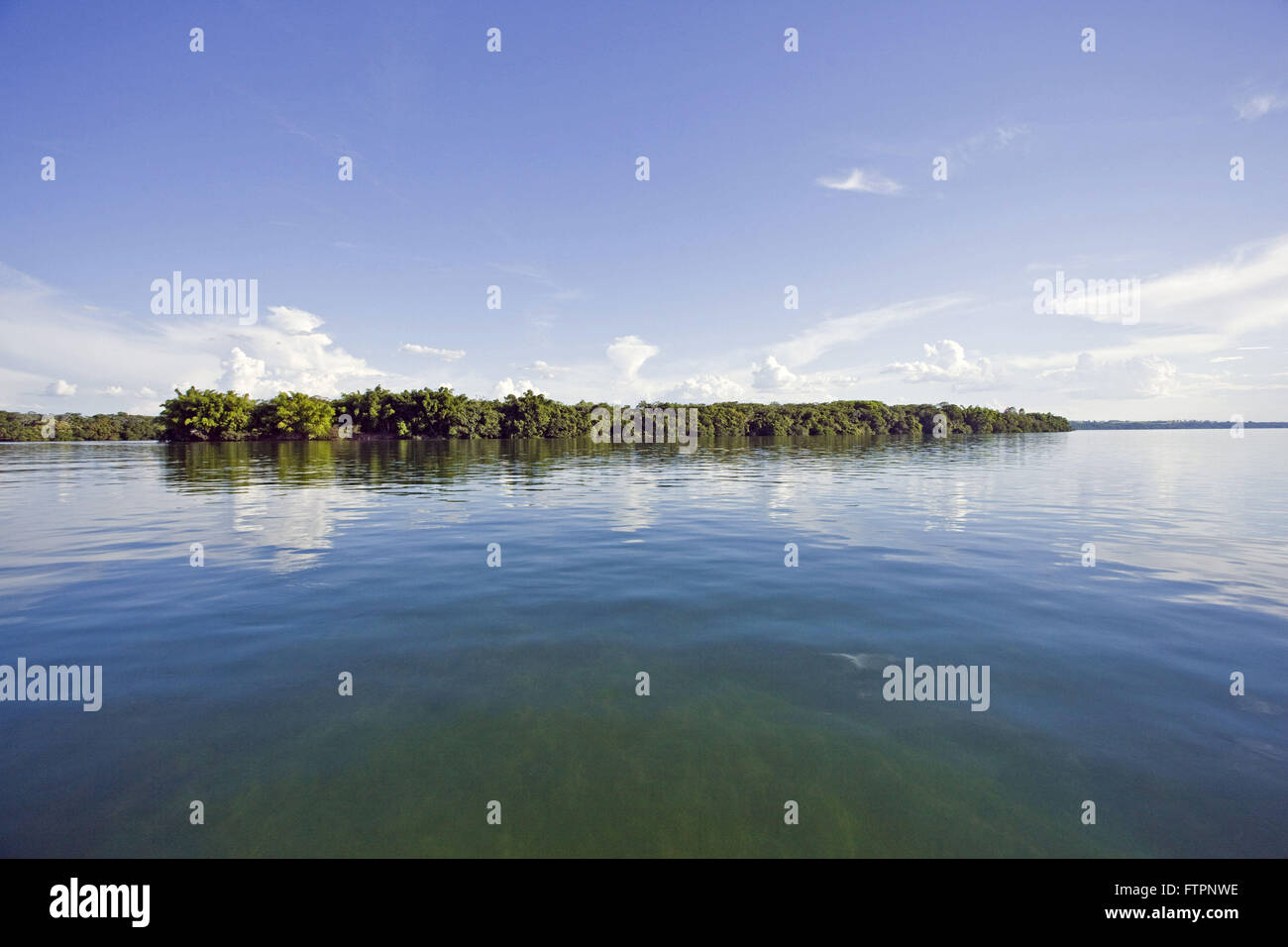 Island in the Parana River - Stock Image