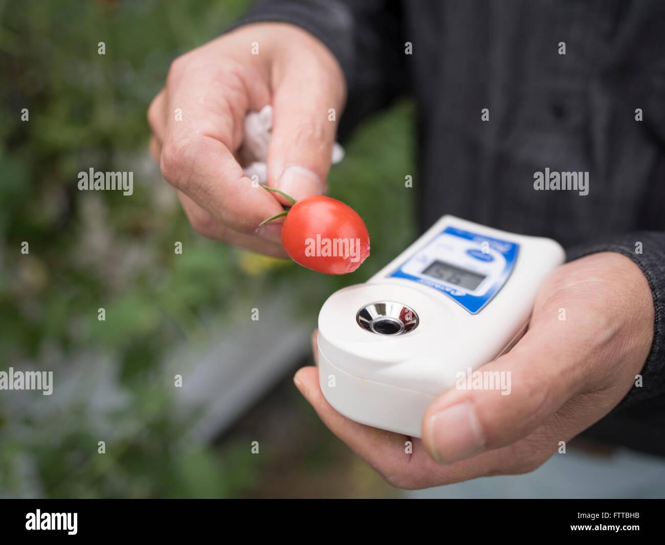 Atago Digital, Brix, Pocket, Hand-Held Refractometer to measure sweetness of tomatoes - Stock Image