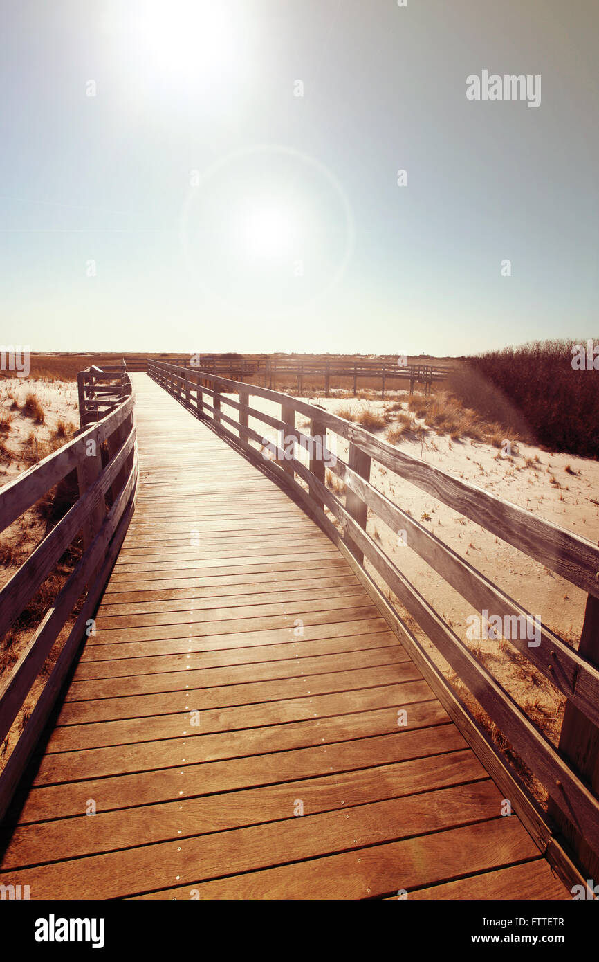 Wooden boardwalk near dunes Stock Photo
