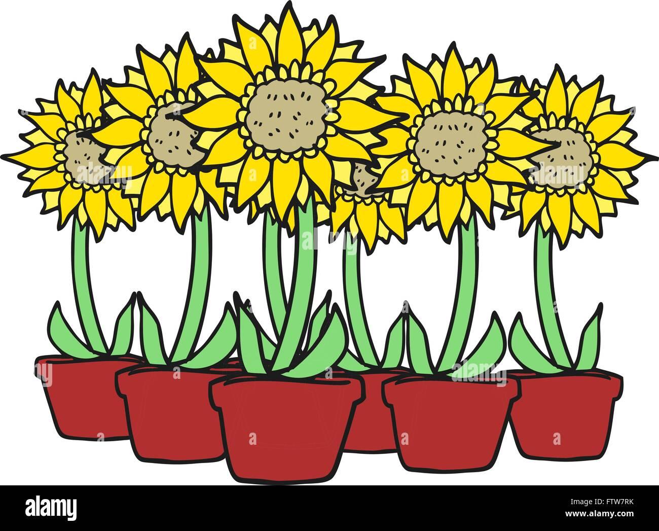 Freehand Drawn Cartoon Sunflowers