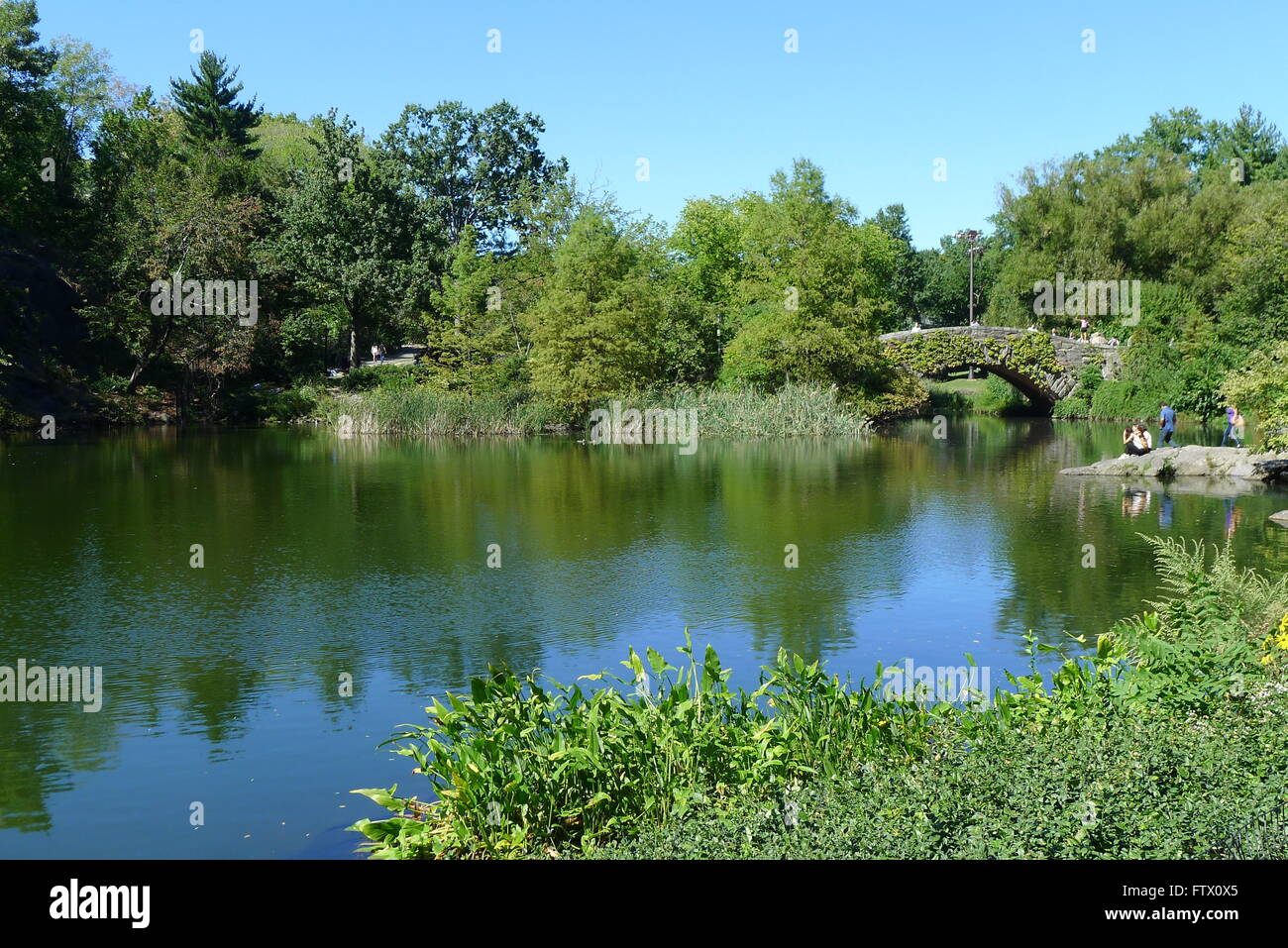 The Pond and Gapstow Bridge in Central Park - Stock Image