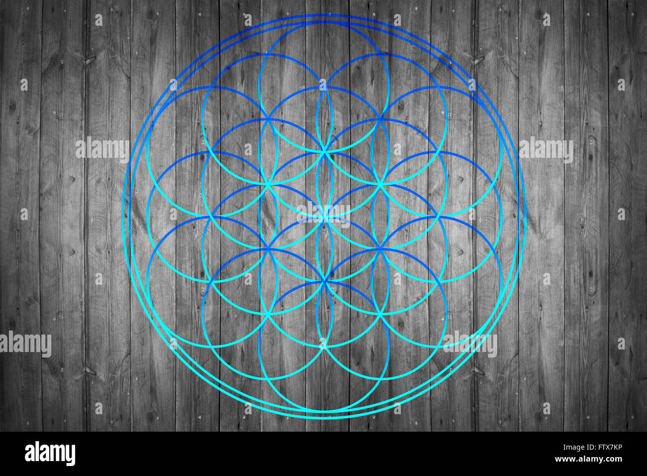 Flower of life - Stock Image
